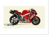 2000 HONDA VTR1000SPW - Team Cabin Honda
