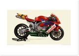 2004 HONDA CBR1000RR - Castrol Honda Dream RT